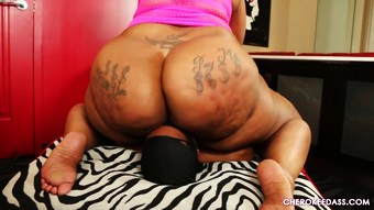 Fat mature ebony face sitting